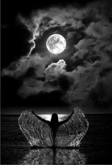 Full Moon in Taurus   Rubys Readings